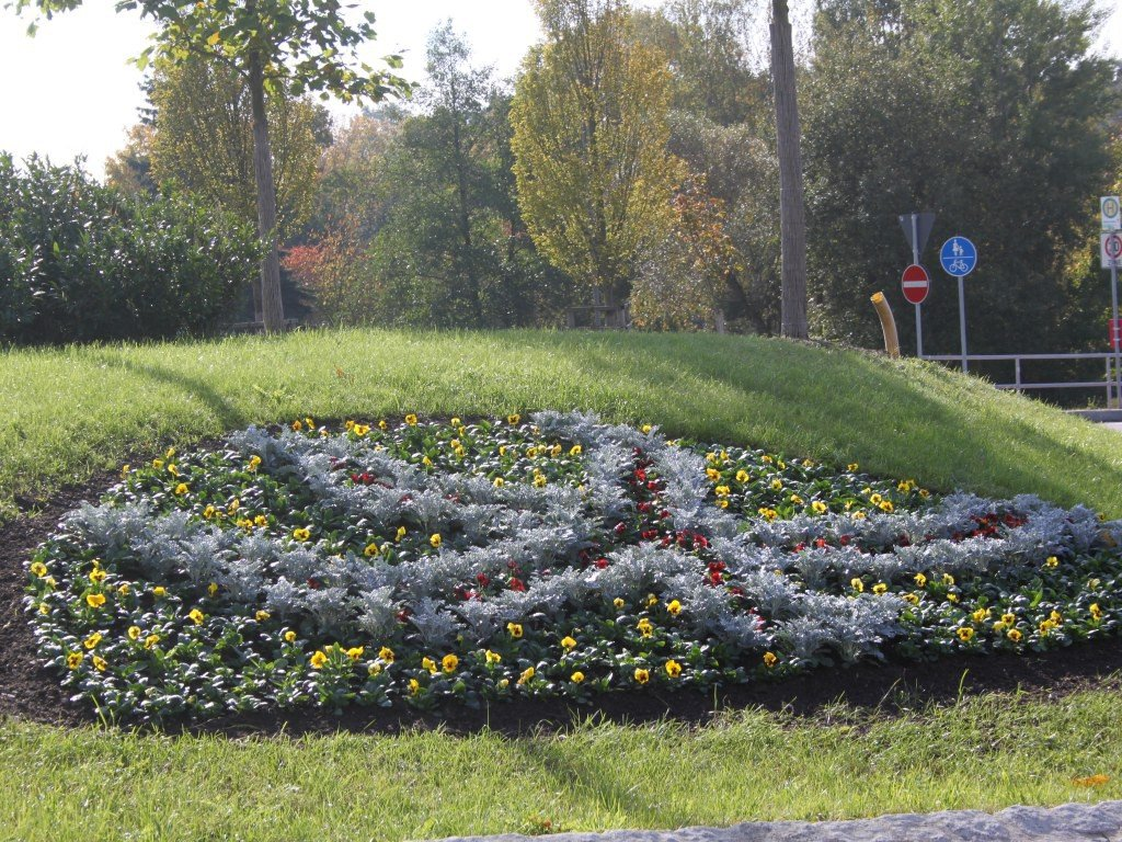Beetblumen Balkonblumen Gärtnerei Fischer Burglengenfeld