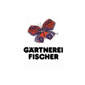 HD – Bayerische Pflanze Des Jahres 2021
